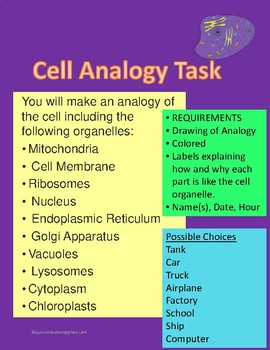 Cell Analogy Task