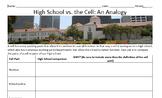 Cells Analogy Worksheet