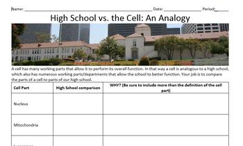 Cell Analogy Worksheet
