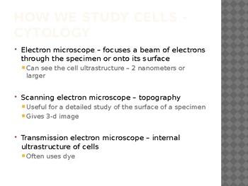 Cell Basics