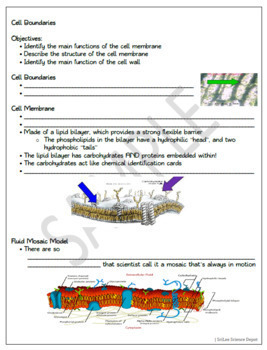Cell Boundaries PowerPoint, Student Guided Notes, Worksheet