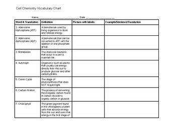 Cell Chemistry Vocabulary Chart