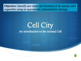 Cell City - An Introduction and Project Pack