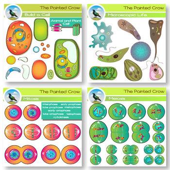 Cell Clip Art Mega Bundle - Biology - 266 Graphics