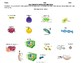 Cell Concept Mapping Cut and Paste Activity
