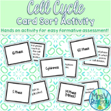 Cell Cycle Card Sort