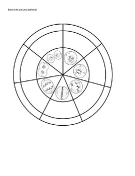 """Cell Cycle Circle """"spinner"""""""