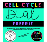 Cell Cycle Dial Activity FREEBIE