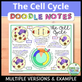 Cell Cycle Doodle Notes FREEBIE