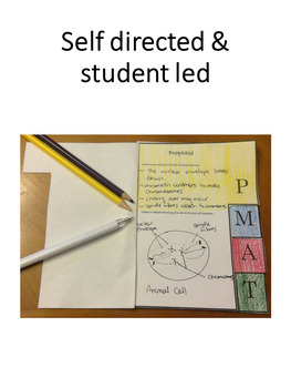 Cell Cycle Flip Book