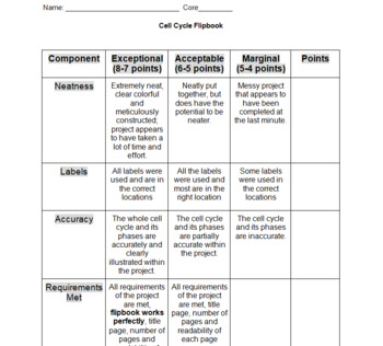 Cell Cycle Flipbook -- Instructions and Rubric