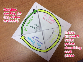 Cell Cycle Foldable Instructions