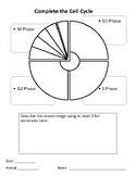Cell Cycle Graphic Organizer