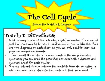 Cell Cycle Interactive Notebook Diagram