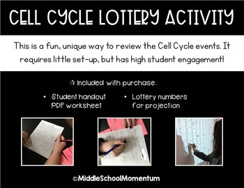 Cell Cycle Lottery Activity