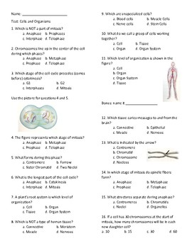 Cell Cycle/ Meiosis/Mitosis  Test and Review