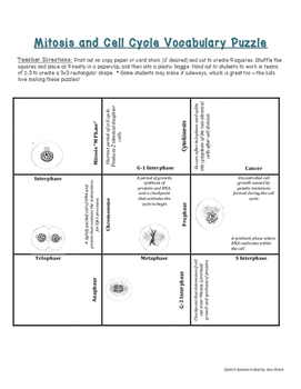 Cell Cycle &  Mitosis Vocabulary Puzzle Card Sort