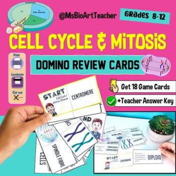Cell Cycle - Mitosis Domino Review Cards - High School