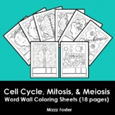 Cell Cycle, Mitosis and Meiosis Word Wall Coloring Sheets