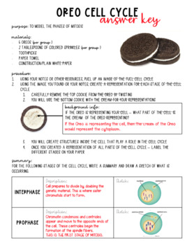 Cell Cycle - Oreo Mitosis Lab