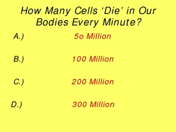 Cell Cycle PowerPoint