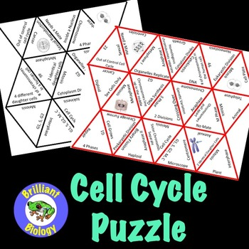 Cell Cycle Puzzle Review
