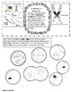 Cell Cycle Student Workbook-Color