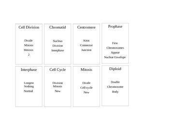 Cell Cycle Taboo-Editable