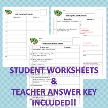 Meiosis Worksheet Teacher Web Answers - Breadandhearth
