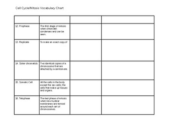 Cell Cycle Vocabulary Chart