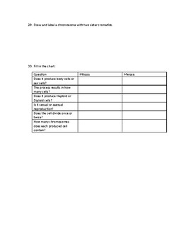Cell Cycle and Cell Division (Mitosis and Meiosis) Study Guide