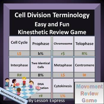 Cell Cycle and Division -- Kinesthetic Review Game