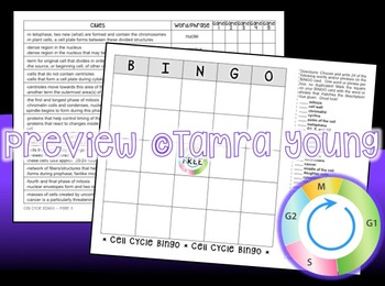 Cell Cycle and Mitosis BINGO