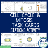 Cell Cycle and Mitosis Task Cards