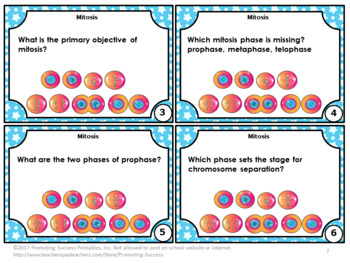 Cell Cycle Mitosis Task Cards Cell Cycle Activity Games,