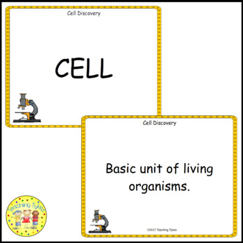 Cell Discovery Vocabulary Cards
