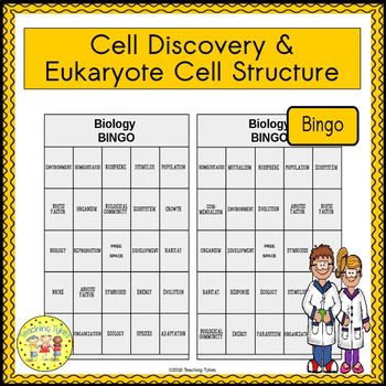Cell Discovery and Eukaryote Cell Structure BINGO