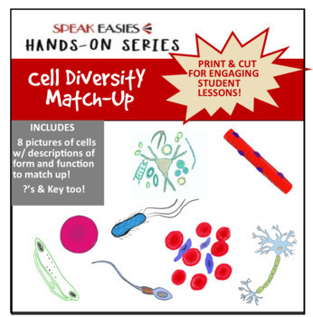 Cell Diversity Match-Up