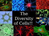 Cell Diversity PPT - Middle School Life Science