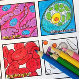 "Cell Diversity and Organelles: ""Let's Cell-ebrate!"" Colori"