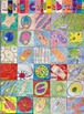 Cell Diversity and Structure: Let's Cell-ebrate! Class Quilt and Coloring Bundle