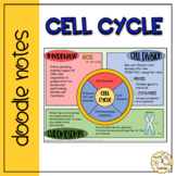 Cell Division Doodle Notes