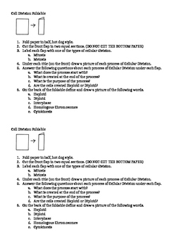 Cell Division Foldable Instructions - SUB PLANS