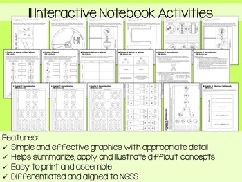 Cell Division Interactive Notebook Unit