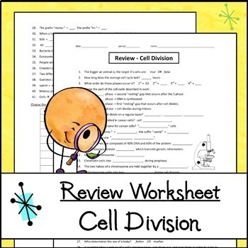 Cell Division Mini-Bundle - Mitosis & Meiosis Card Sort, Task Cards, Worksheet