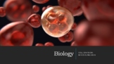 Cell Division Mitosis/Meiosis, Karyotypes and Chromosomal Mutations Presentation