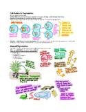 Cell Division (Mitosis, Meiosis) & Reproduction (A/sexual) Notes / Study Guide