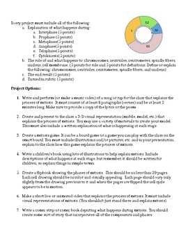 Cell Division (Mitosis) Projects for Students