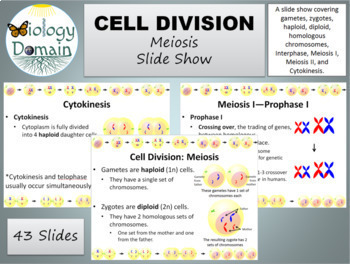 Cell Division: Mitosis and Meiosis Powerpoint Slide Show Bundle