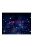 Cell Division Notes Middle School